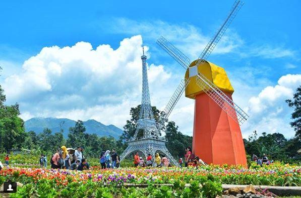 Tiket Masuk Dan Lokasi Taman Bunga Celosia Bandungan Semarang